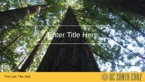 Slide presentation template